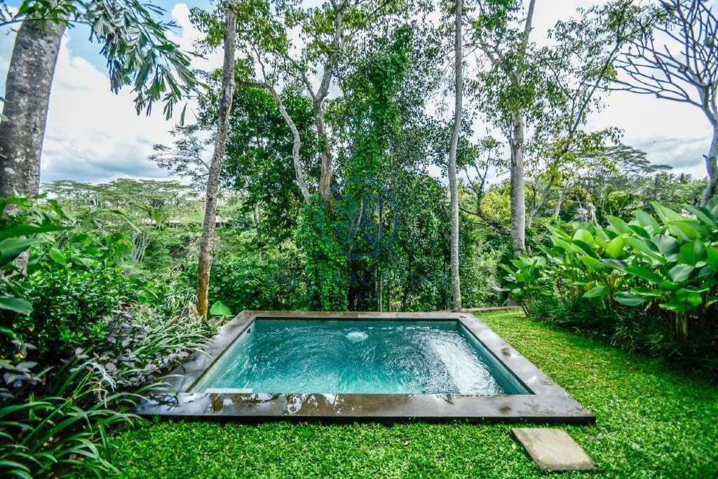10 bedrooms hotel retreat hillside sunset ubud for sale rent 51