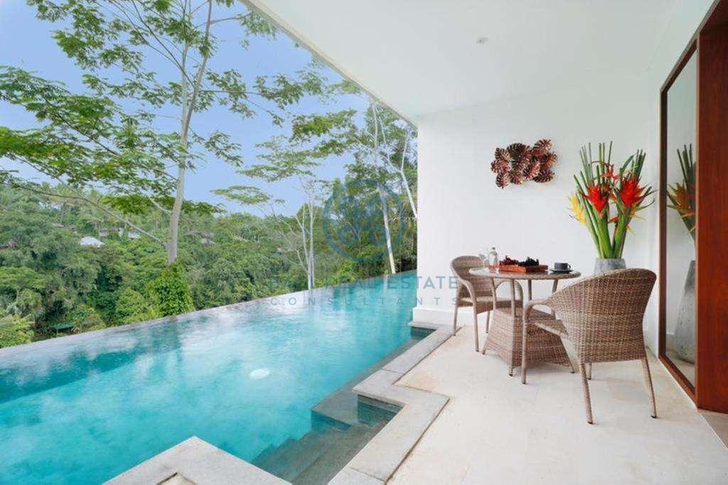 19 bedrooms hotel retreat hillside sunset ubud for sale rent 19