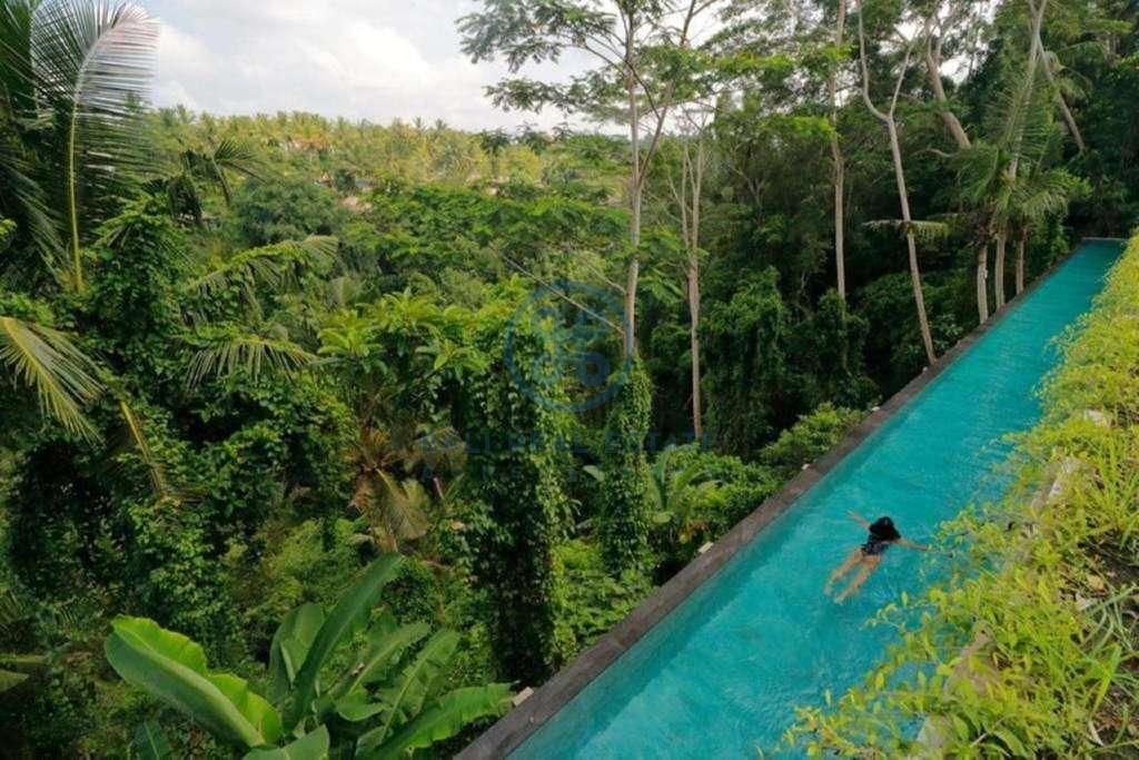 19 bedrooms hotel retreat hillside sunset ubud for sale rent 20