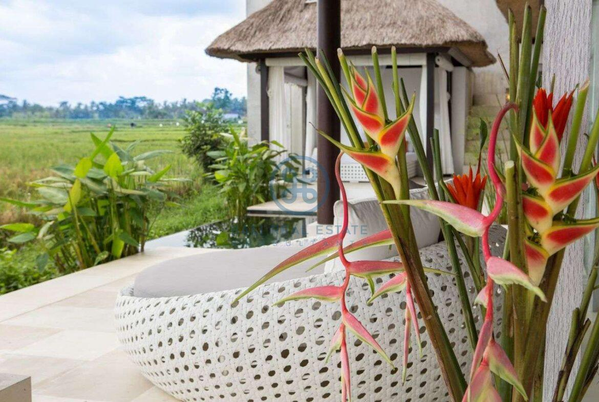 2 bedrooms tropical villa ricefield ubud for sale rent 10