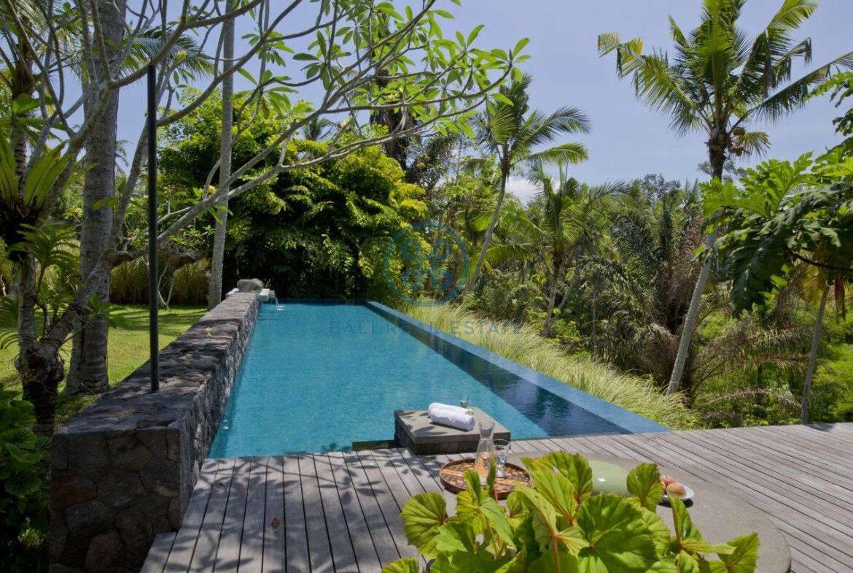 2 bedrooms villa estate river view ubud for sale rent 27