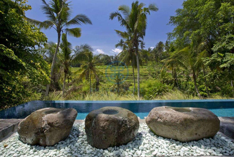 2 bedrooms villa estate river view ubud for sale rent 28
