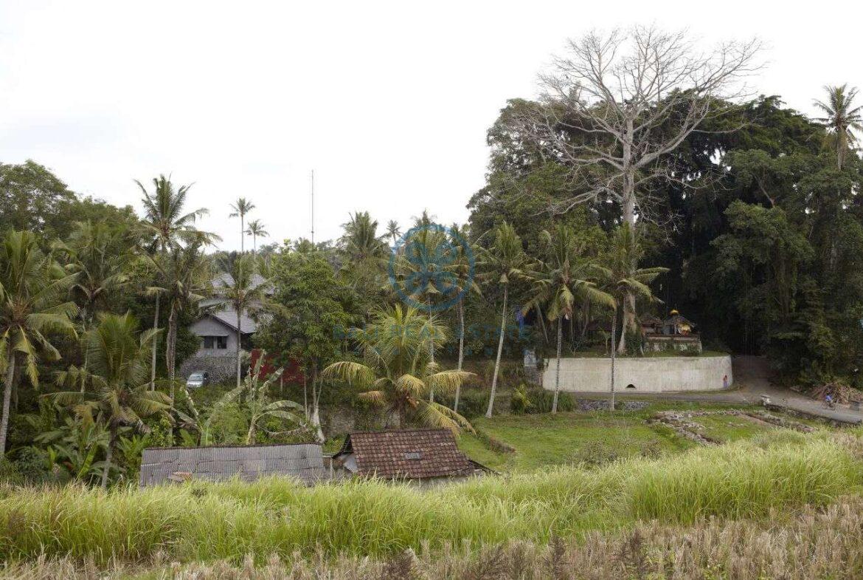 2 bedrooms villa estate river view ubud for sale rent 29