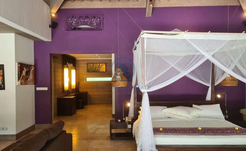 26 bedrooms modern villa investment ubud for sale rent 13