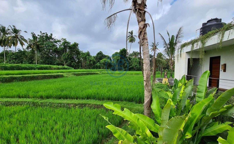 26 bedrooms modern villa investment ubud for sale rent 28