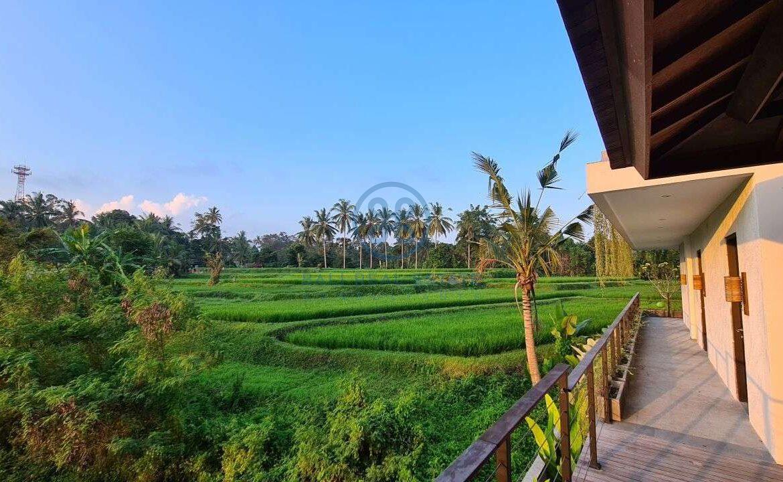 26 bedrooms modern villa investment ubud for sale rent 30