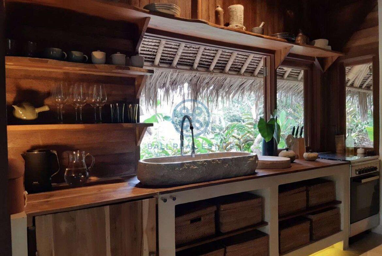 3 bedrooms eco villa with amazing surroundings ubud for sale rent 26
