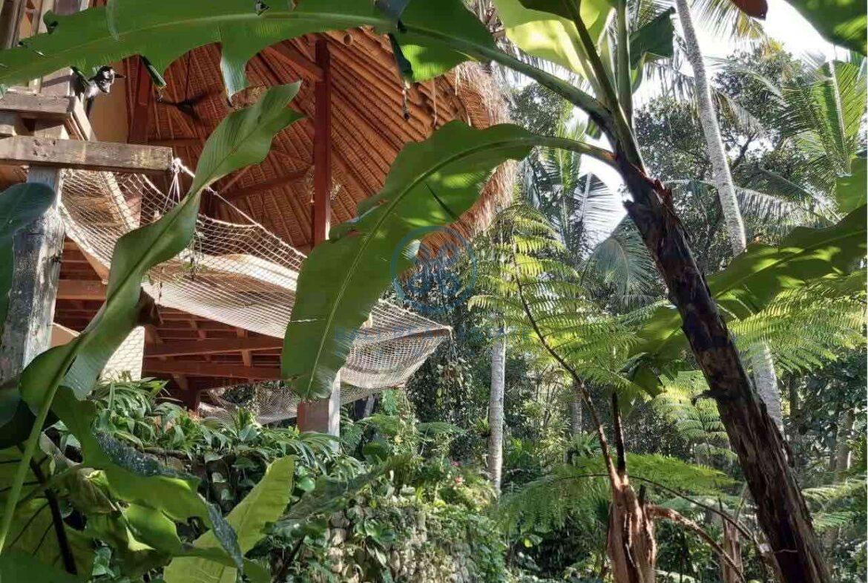 3 bedrooms eco villa with amazing surroundings ubud for sale rent 3