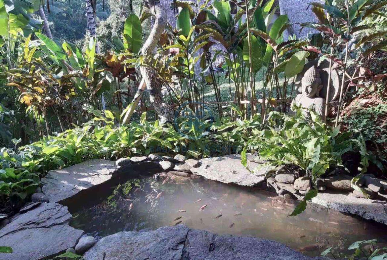 3 bedrooms eco villa with amazing surroundings ubud for sale rent 8