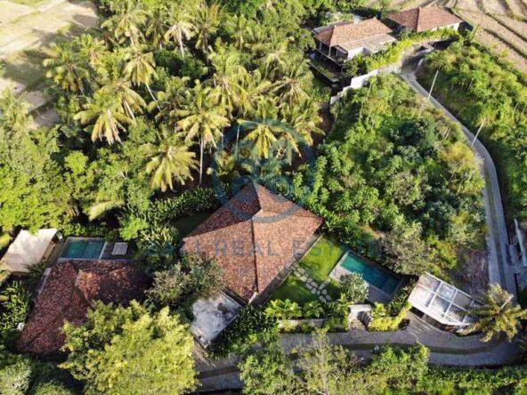 3 bedrooms traditional villa bali ubud for sale rent 1