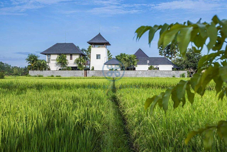 3 bedrooms villa bali style ricefield view kedungu for sale rent 26