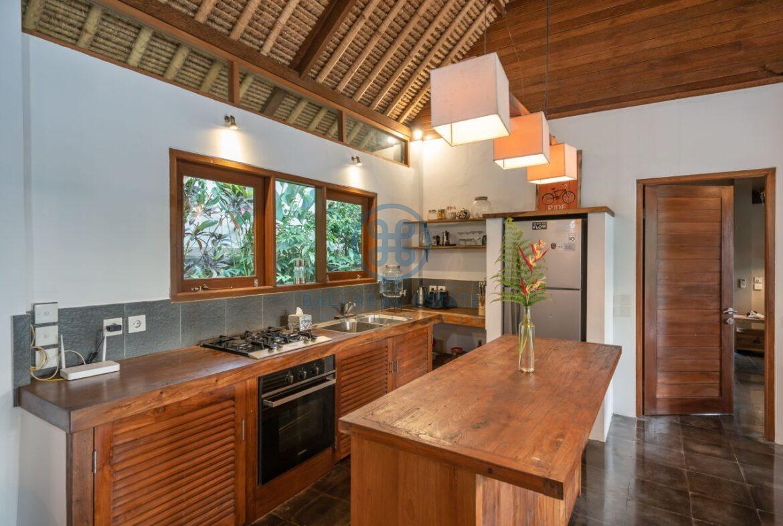 3 bedrooms villa overlooking river sayan ridge ubud for sale rent 10