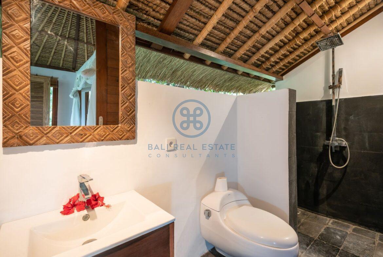 3 bedrooms villa overlooking river sayan ridge ubud for sale rent 6