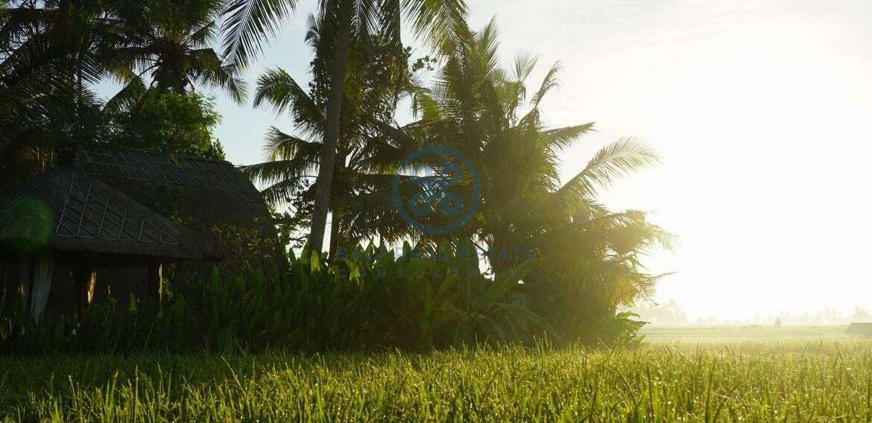 3 bedrooms villa retreat ricefield view kedungu for sale rent 1
