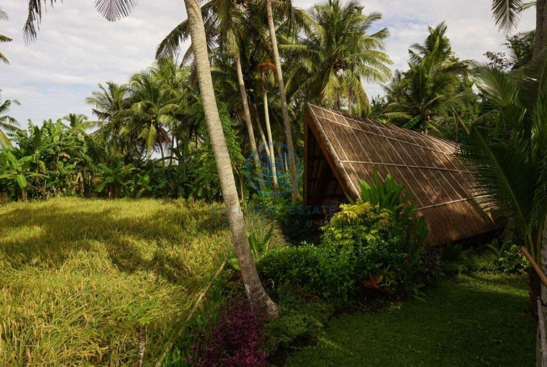 3 bedrooms villa retreat ricefield view kedungu for sale rent 2