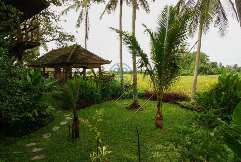 3 bedrooms villa retreat ricefield view kedungu for sale rent 4