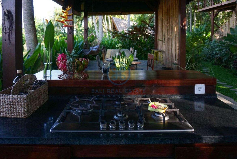3 bedrooms villa retreat ricefield view kedungu for sale rent 6