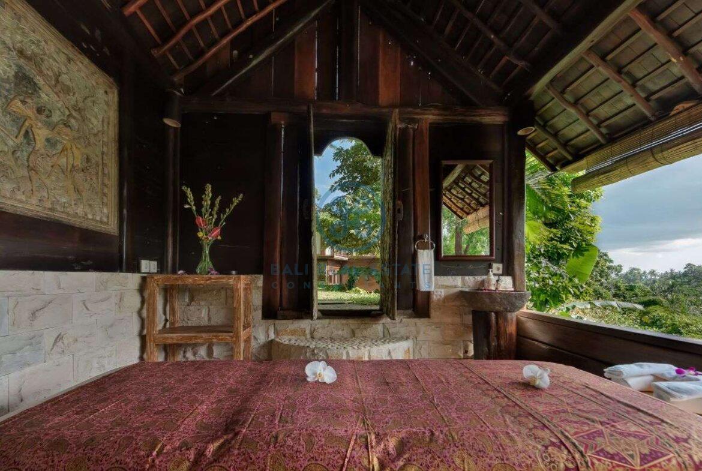 3 bedrooms villa ubud valley view for sale rent 1