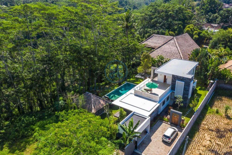 3 bedrooms villa valley view ubud for sale rent 8 1