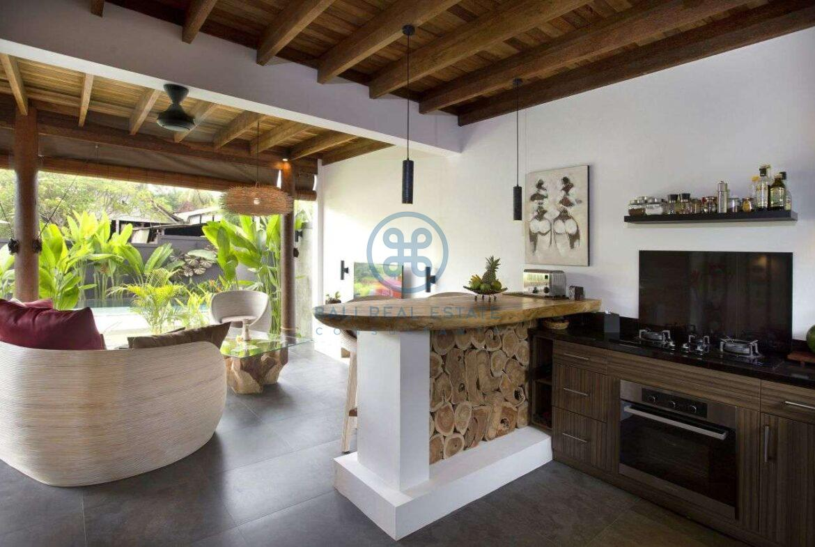 3 bedrooms villa with lanscaped garden view ubud for sale rent 16