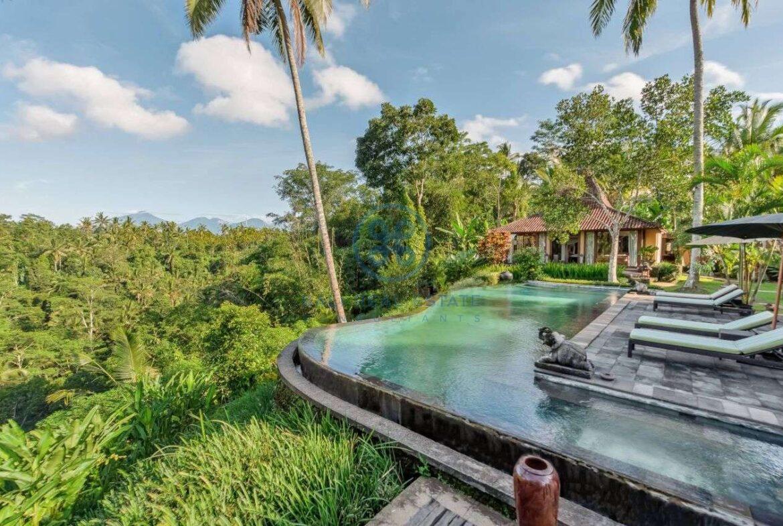 4 bedrooms villa estate jungle view ubud for sale rent 4