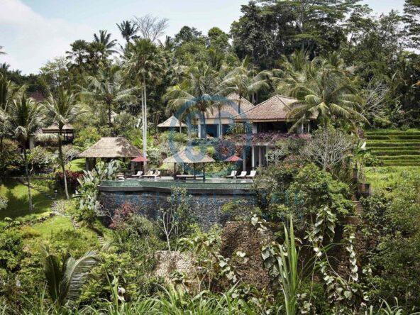 4 bedrooms villa estate moutain view ubud for sale rent 2