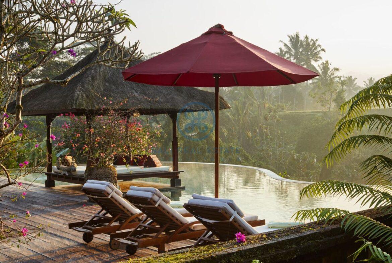 4 bedrooms villa estate moutain view ubud for sale rent 4