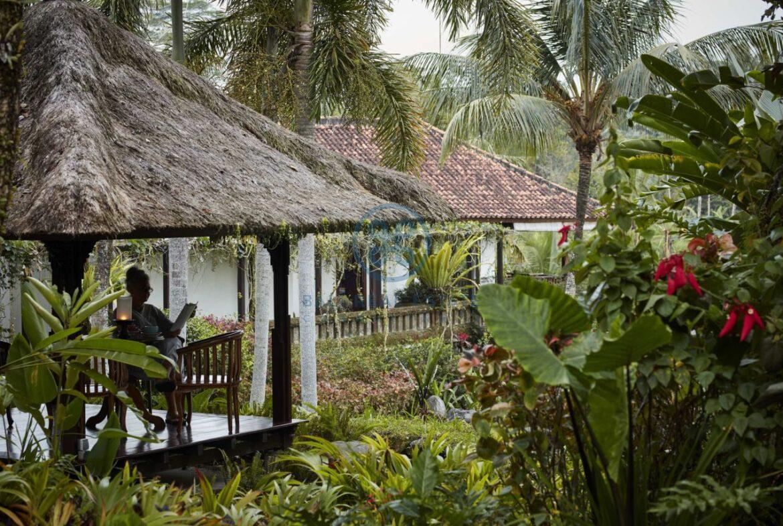 4 bedrooms villa estate moutain view ubud for sale rent 8