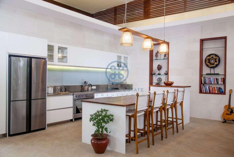 4 bedrooms villa with professional music studio ubud for sale rent 16