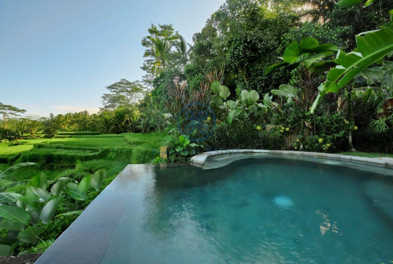 7 bedrooms villa estate jungle valley view ubud for sale rent 31