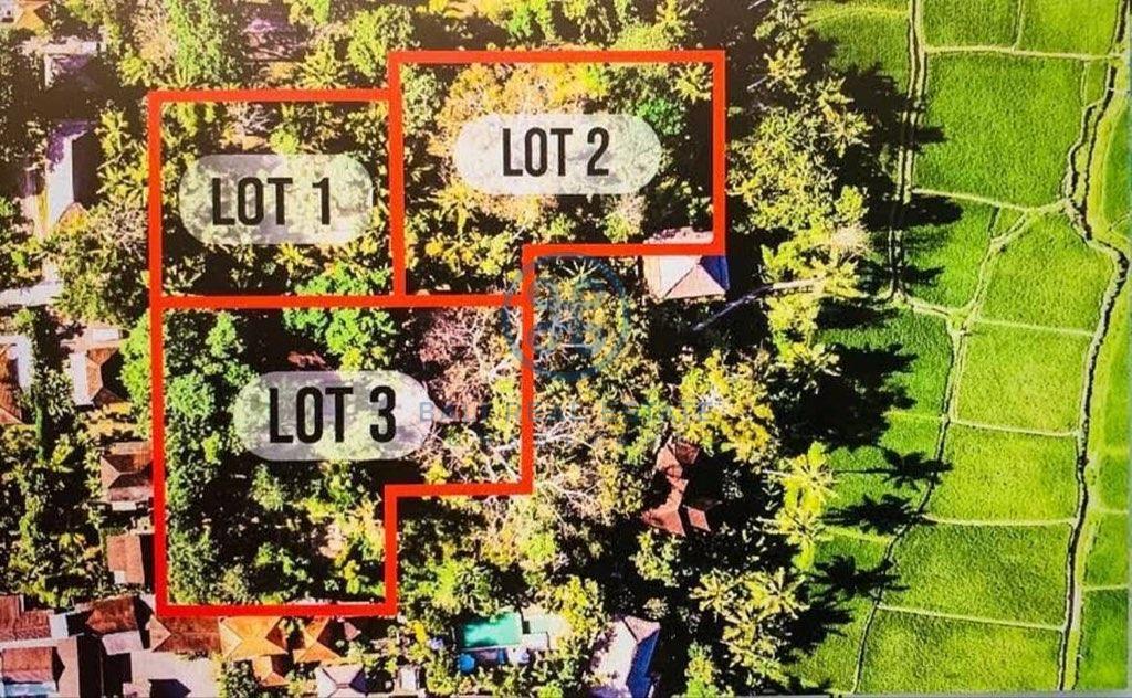 outstanding development opportunity leasehold land bali ubud for sale rent 6 1
