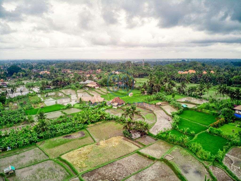 bedrooms villa rice field view ubud for sale rent