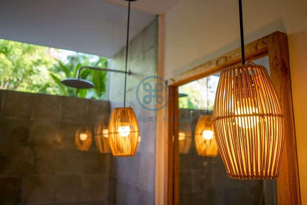 bedrooms villa Jungle view ubud for sale rent